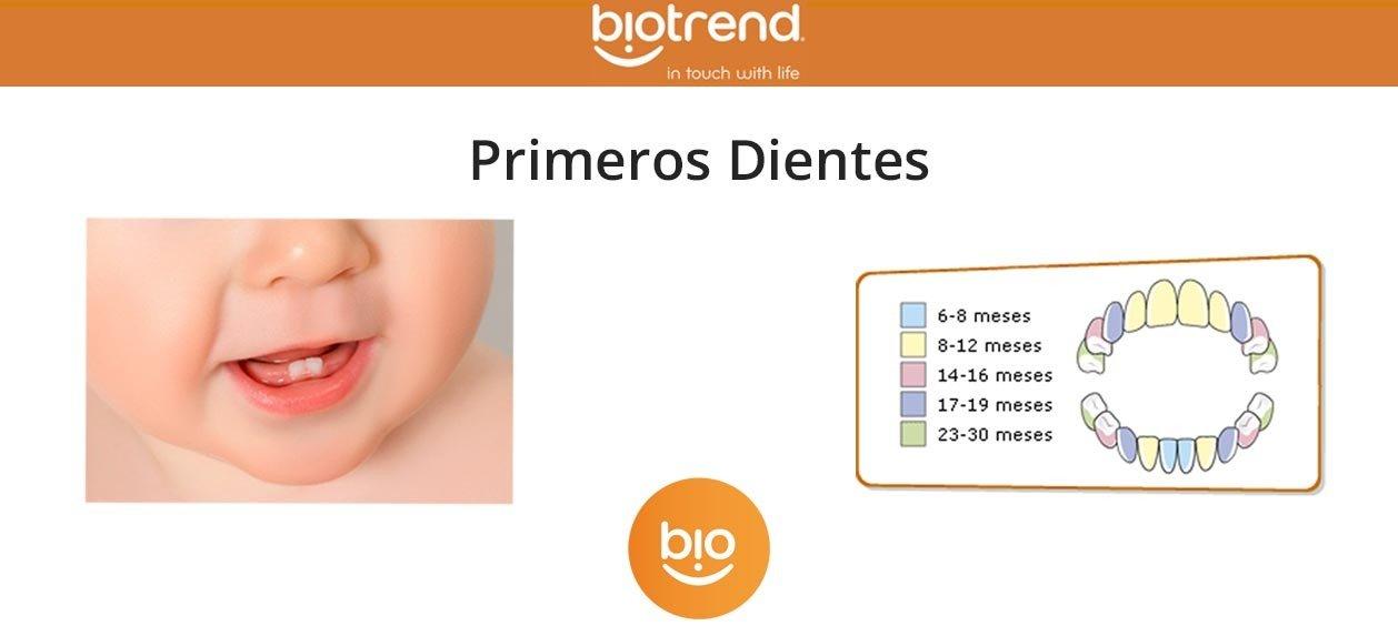 Blog_Primerosdiente